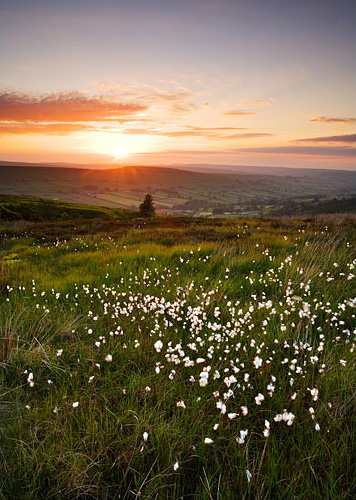 sunset over danby dale