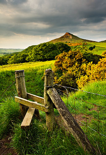 spring at roseberry topping
